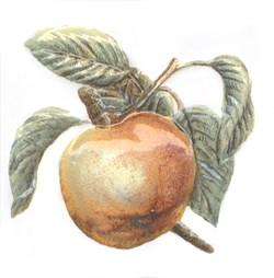 TFA009 Декор Оранжерея Яблоко 9,9х9,9х7 - фото 18652