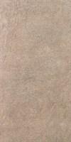 SG216600R Королевская дорога коричневый светлый обрезной 30х60