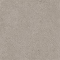 SG457600R Безана серый обрезной 50,2x50,2x9,5